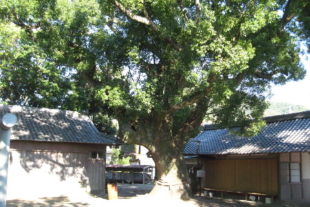 東岩代八幡神社